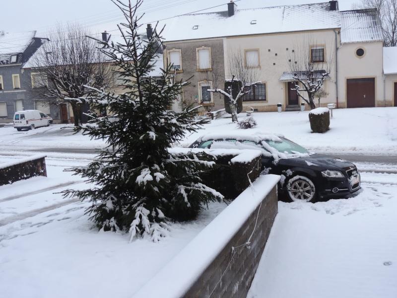 Il a neigé ... Dscn1213