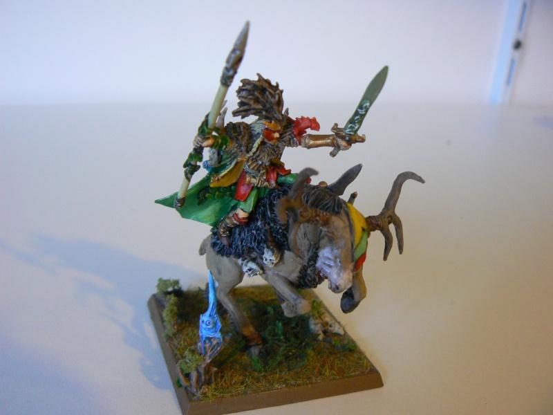 Mon Armée Elfes Sylvains 1d10