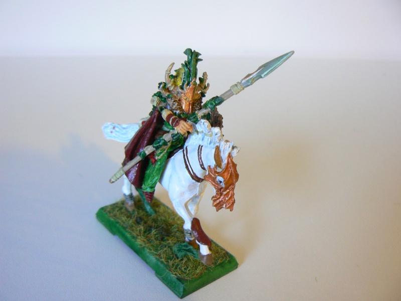 Mon Armée Elfes Sylvains 1e10
