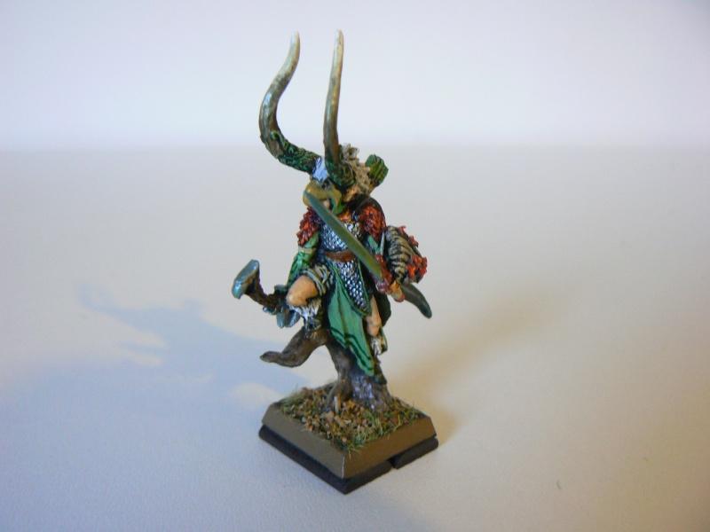 Mon Armée Elfes Sylvains 1g10