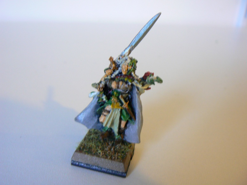 Mon Armée Elfes Sylvains 1i10