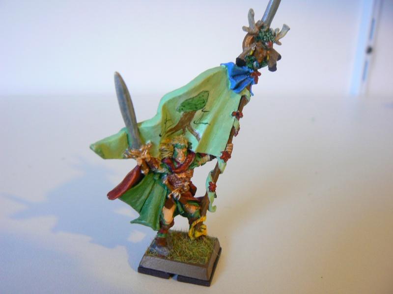 Mon Armée Elfes Sylvains 1j10