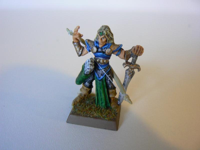 Mon Armée Elfes Sylvains 1k10