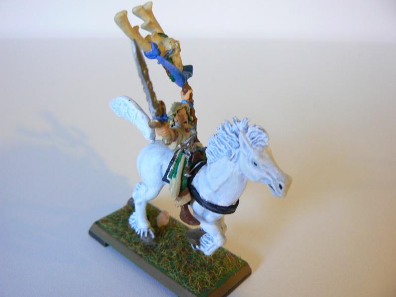Mon Armée Elfes Sylvains 1p10