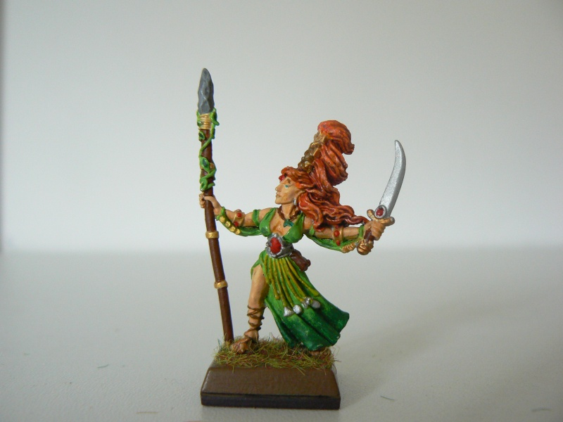 Mon Armée Elfes Sylvains 1ra10
