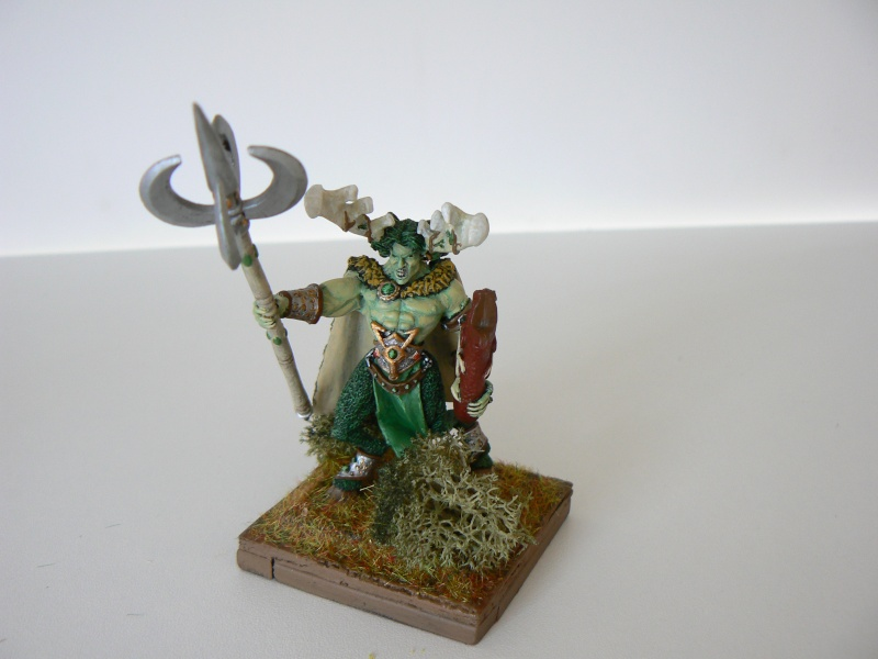 Mon Armée Elfes Sylvains 1u10