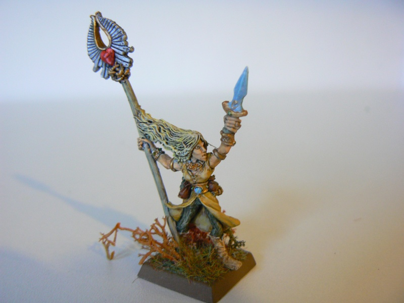 Mon Armée Elfes Sylvains 1zb10