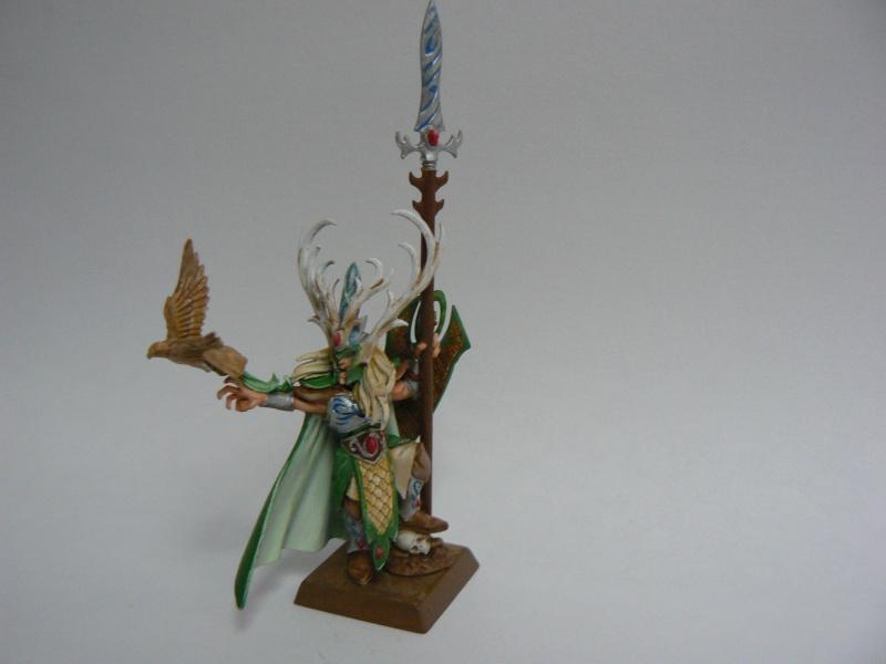 Mon Armée Elfes Sylvains D13