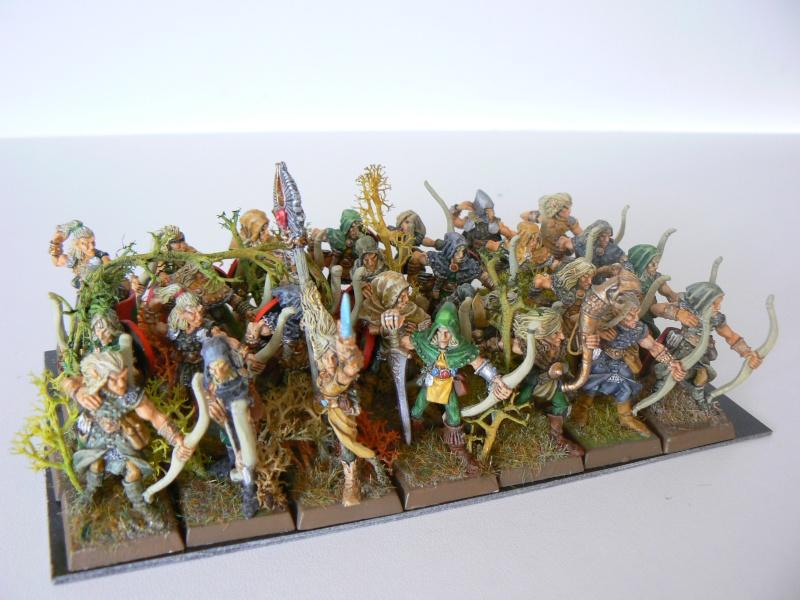 Mon Armée Elfes Sylvains E12