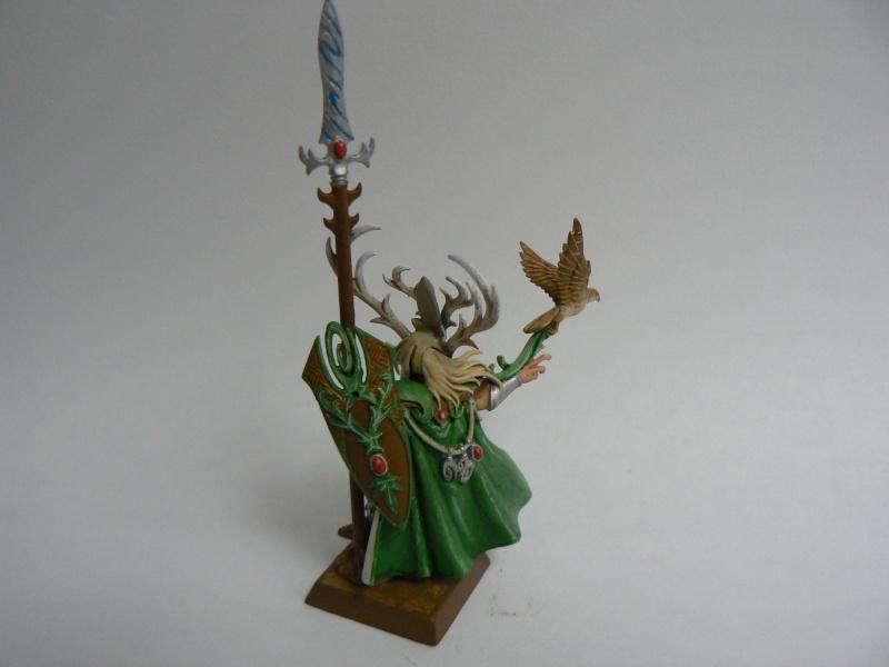 Mon Armée Elfes Sylvains E13