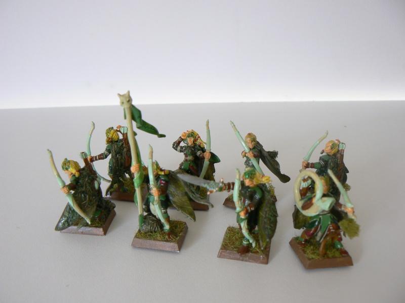 Mon Armée Elfes Sylvains G12