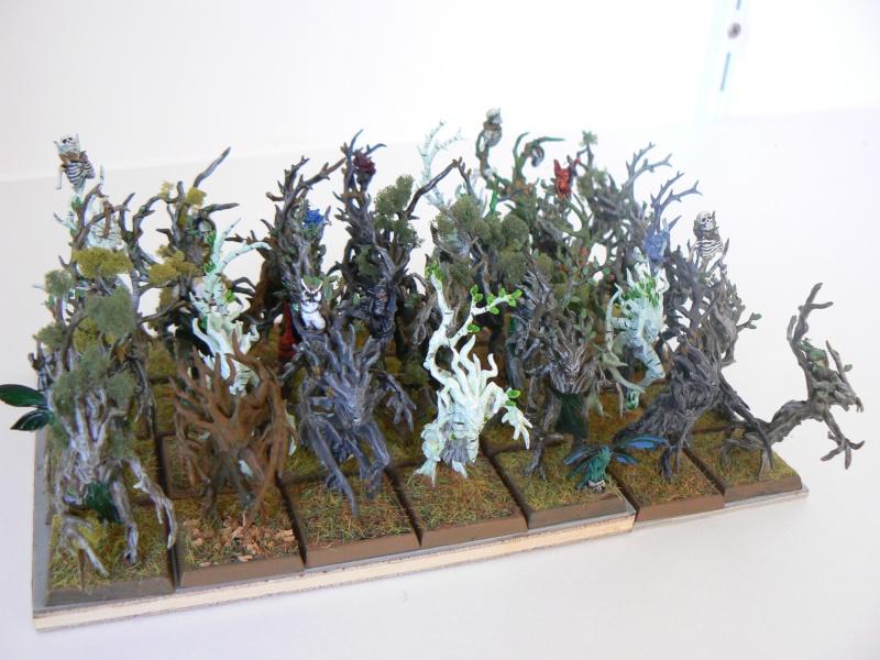 Mon Armée Elfes Sylvains L10