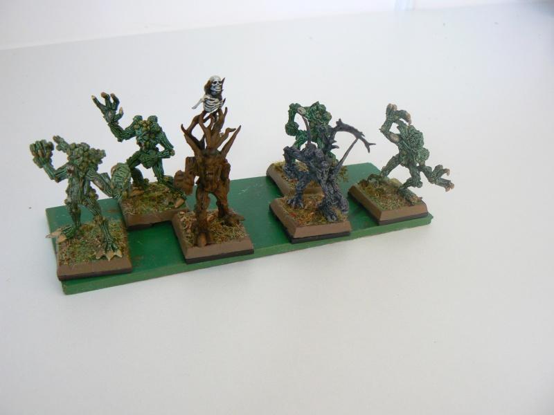 Mon Armée Elfes Sylvains N10