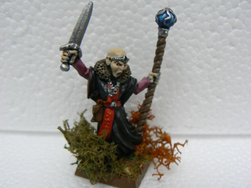 Mon Armée Comte Vampire. P1110914