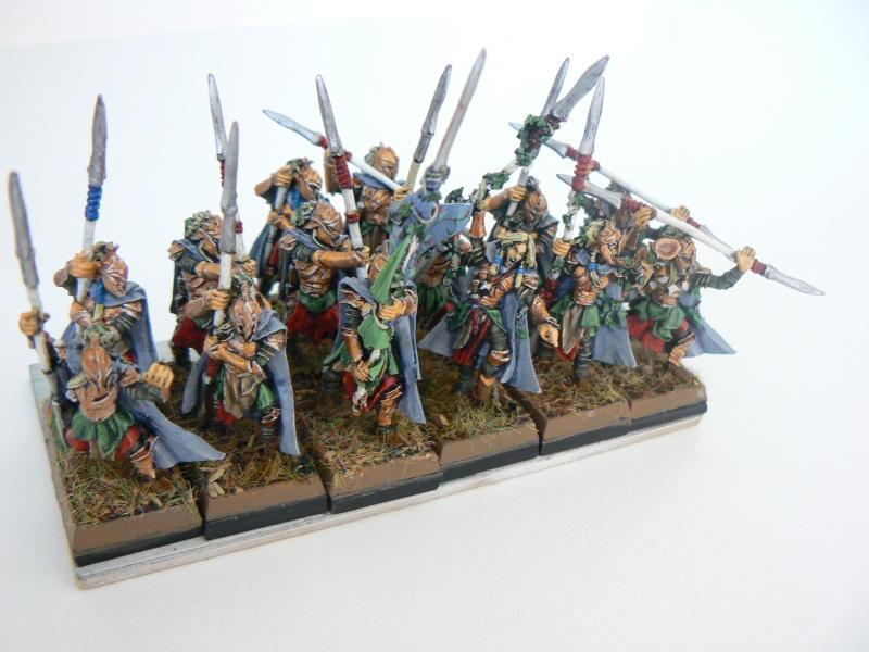 Mon Armée Elfes Sylvains Q10