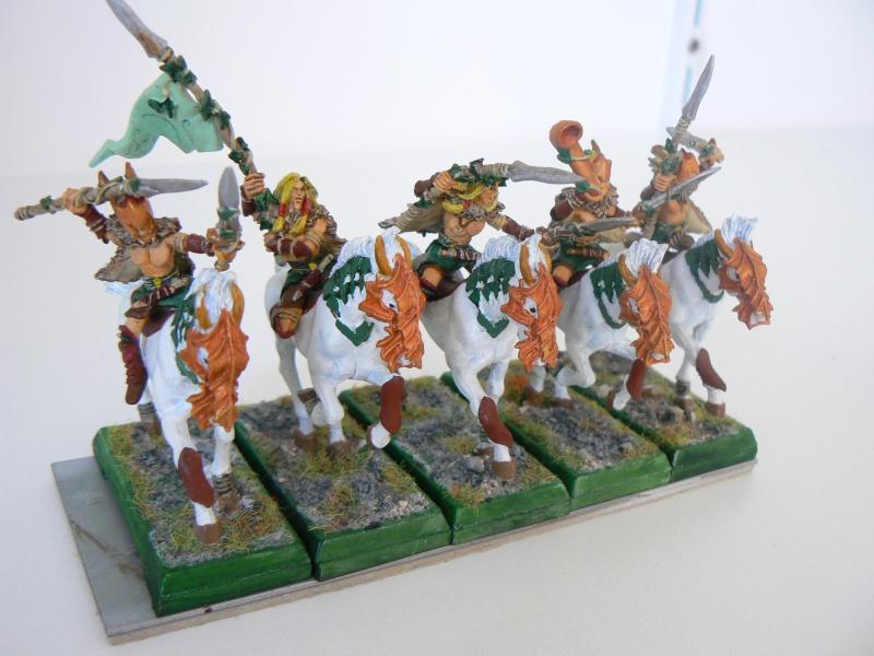 Mon Armée Elfes Sylvains V10