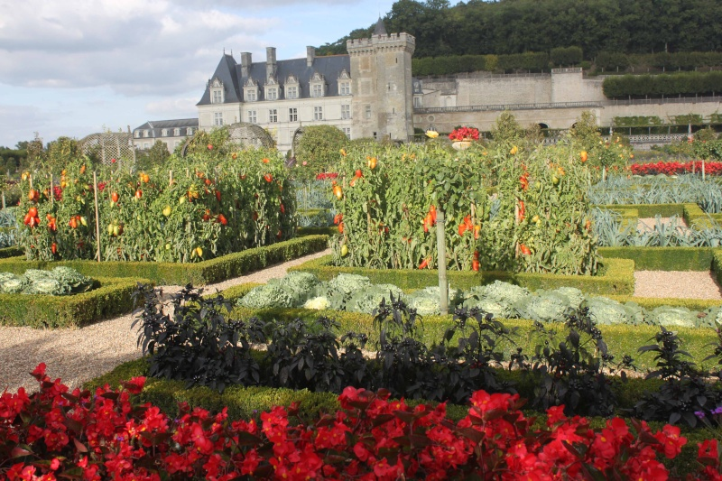 Quelques châteaux de la Loire - Page 3 Villan28