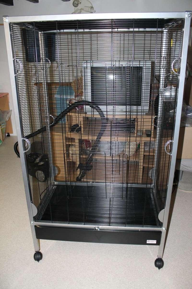 Grande cage volière (Essegi venezia) ! 150€ si part samedi ! Img_0110