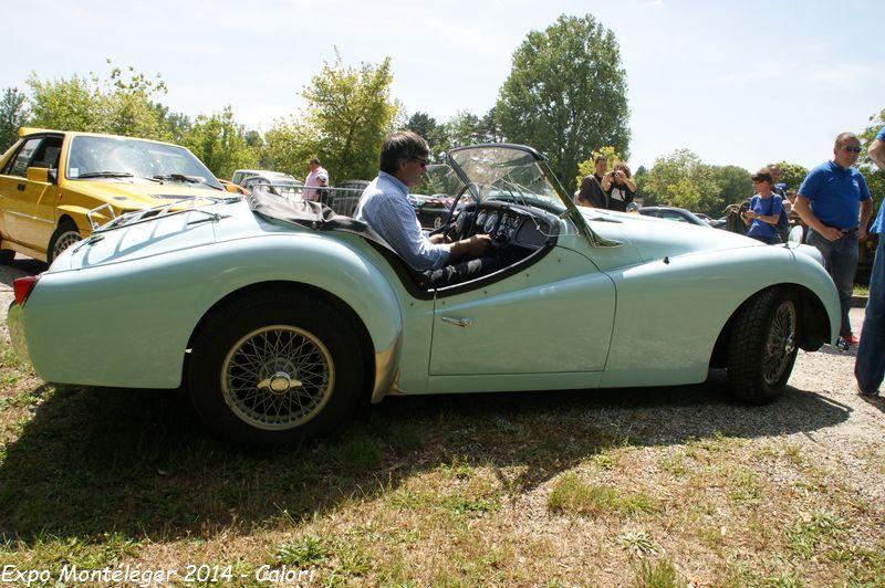 [26] 01/06/2014 - Rassemblement d'anciennes Parc de Lorient - Page 2 Dsc02923