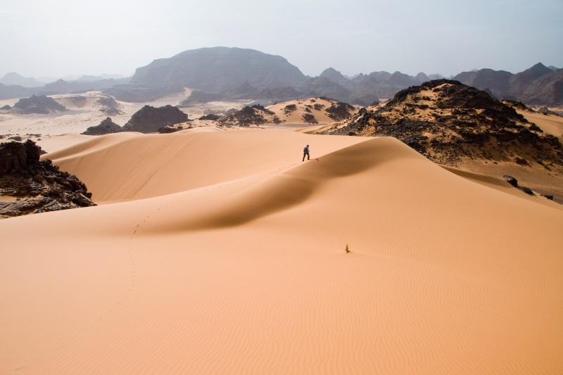 GOBI - Shkretetira misterioze  Shkret10