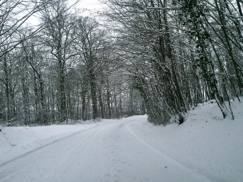 neige Photo010