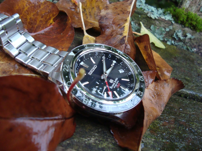 Un bilan horloger 2014 ? Dsc02410