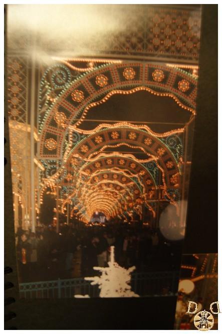 Toutes vos anciennes photos sur les parcs ... souvenirs, souvenirs ...  - Page 5 Dsc08334