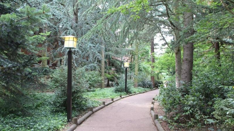 Disney Sequoia Lodge - Page 5 Img_5317
