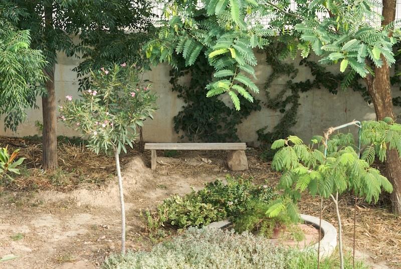 El jardín de senderos que se bifurcan 2_igp010