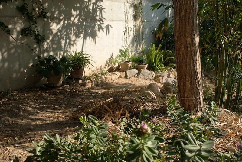 El jardín de senderos que se bifurcan 2_igp118