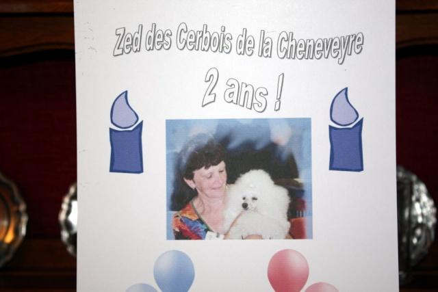 Bon anniversaire, Zed 2010_013