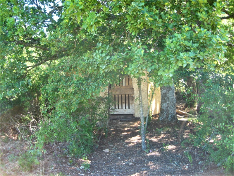 La cabane du confinement 2020 Img_7013