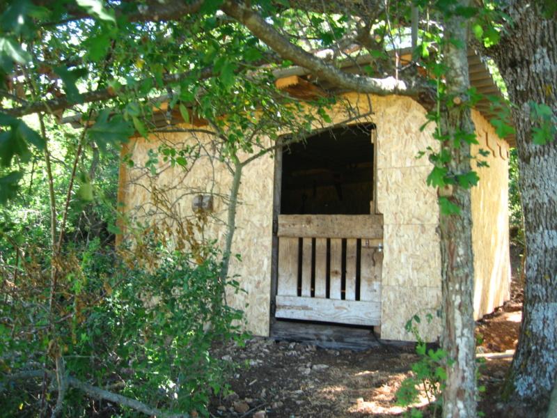 La cabane du confinement 2020 Img_7014