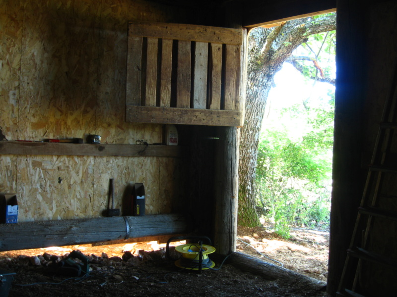 La cabane du confinement 2020 Img_7016
