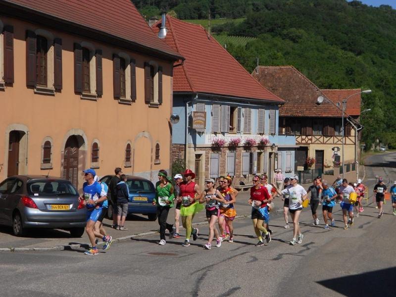 10 ème édition du Marathon du Vignoble d'Alsace et son passage à Wangen le 15 juin 2014 10433310