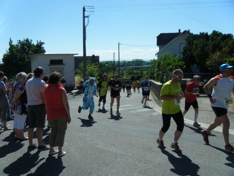 10 ème édition du Marathon du Vignoble d'Alsace et son passage à Wangen le 15 juin 2014 Dscf1018