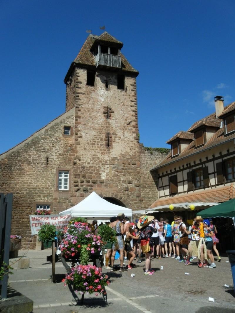 10 ème édition du Marathon du Vignoble d'Alsace et son passage à Wangen le 15 juin 2014 Dscf1046