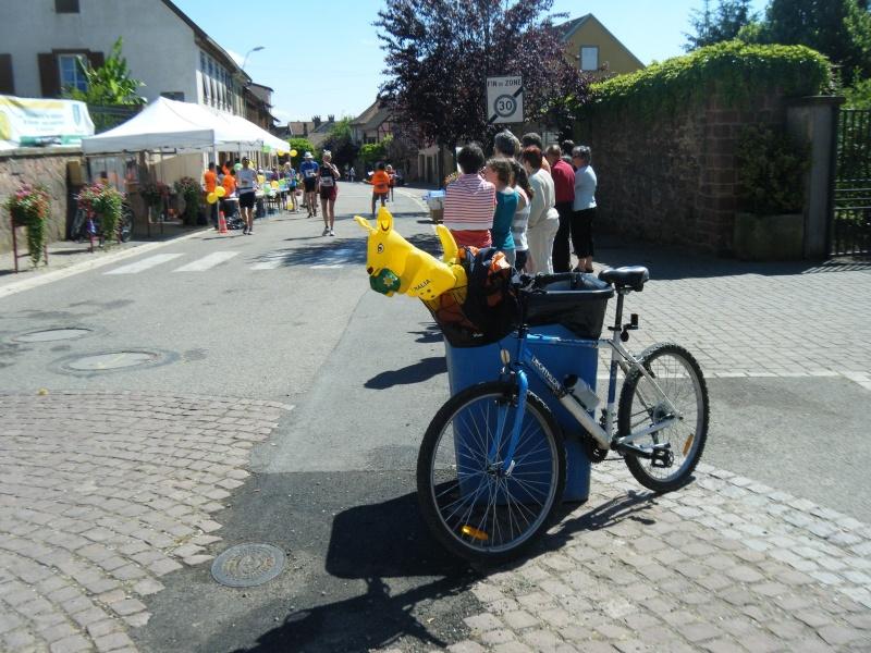10 ème édition du Marathon du Vignoble d'Alsace et son passage à Wangen le 15 juin 2014 Dscf1126