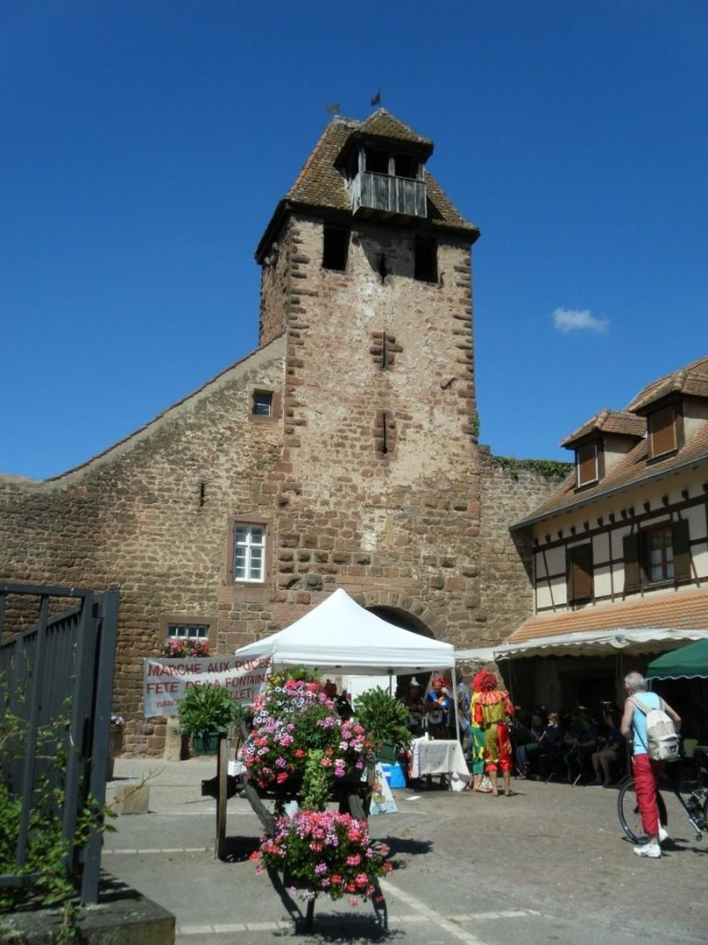 10 ème édition du Marathon du Vignoble d'Alsace et son passage à Wangen le 15 juin 2014 Dscf1127