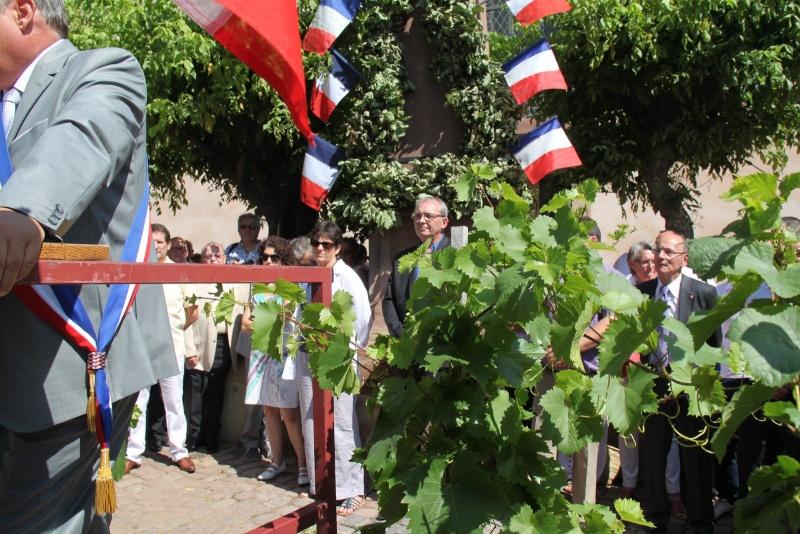 187 ème Fête de la Fontaine à Wangen les 6 & 7 juillet 2014 Img_0552
