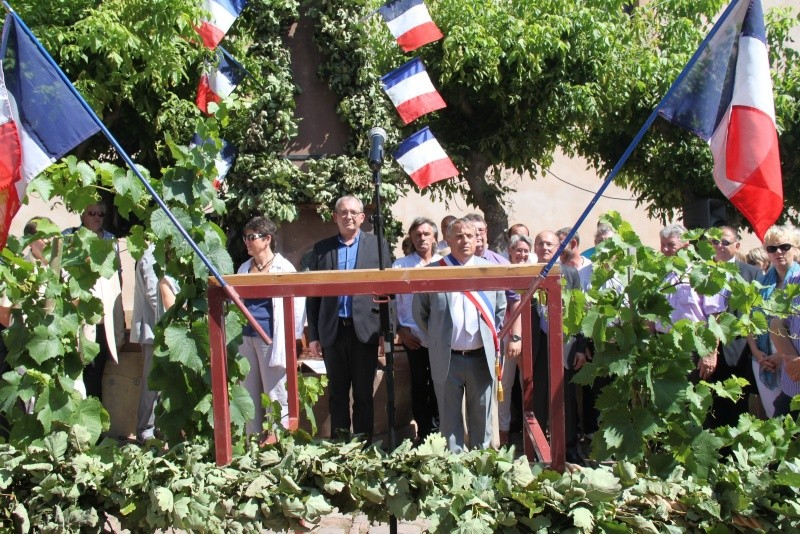 187 ème Fête de la Fontaine à Wangen les 6 & 7 juillet 2014 Img_0554