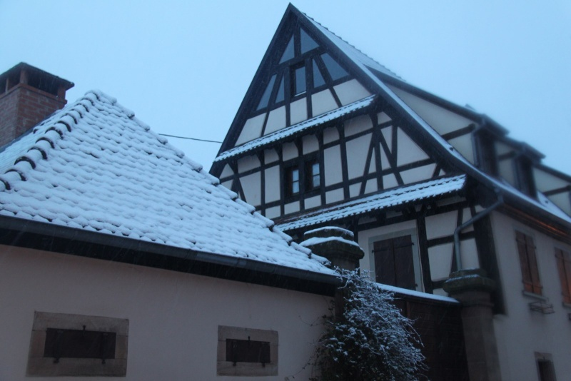 Il a neigé sur Wangen le 27 décembre 2014... Img_5616