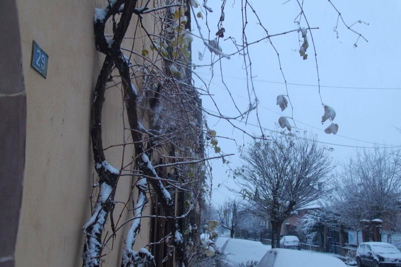 Il a neigé sur Wangen le 27 décembre 2014... Img_5718