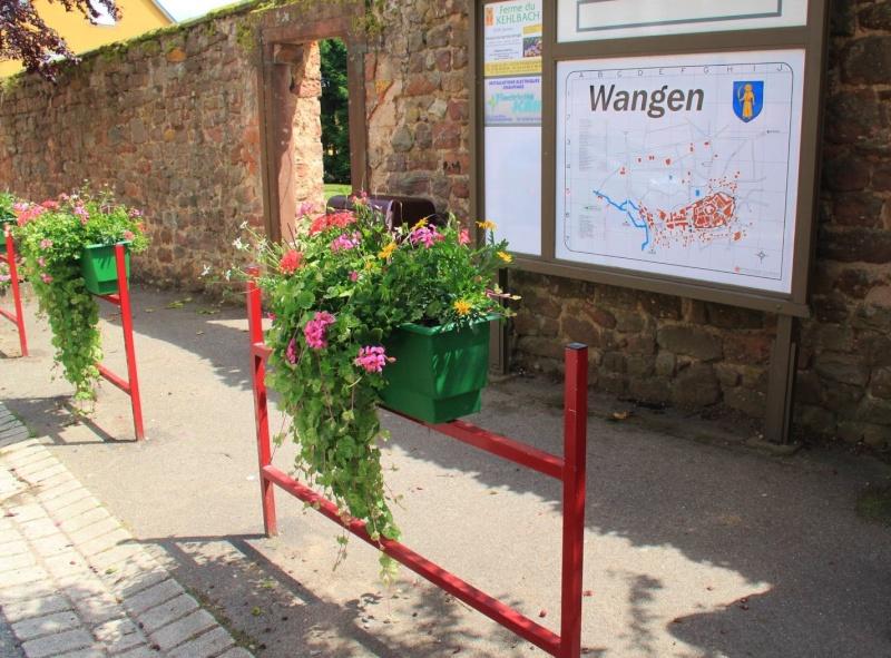 Venez souffler à Wangen! Img_5919