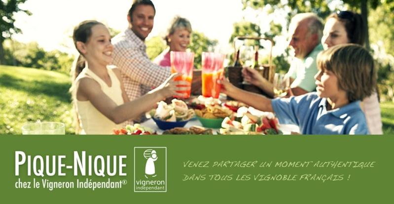 Vins et Crémant d'Alsace Thierry- Martin - Page 3 Pique_10