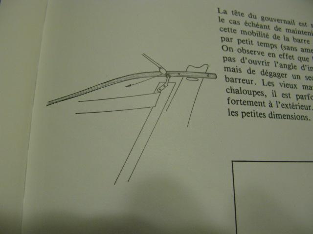 Chaloupe Sardinière 1/50 - - Page 7 Img_0219