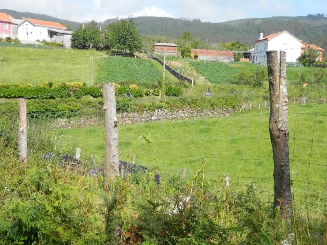 Vuelta a Galicia en ciclomotor  P6140724