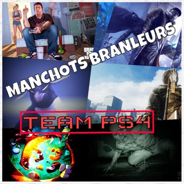 Manchots Branleurs