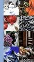Les différentes versions des  cartes Lenormand - Page 13 Index_10