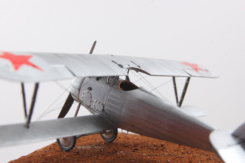 [Roden] Nieuport 24 - la fleur de cerisier Dsc_0023